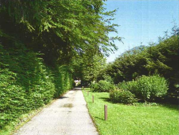 Residenz_Wolfgangsee_private_Auffahrt